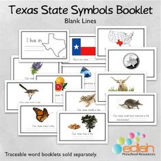 texas state symbols booklet blank lines