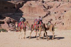 Cammellieri in Giordania by Chiara Dato