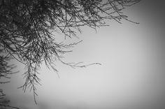 eir-photo