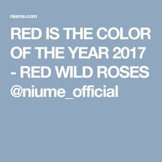 RED IS THE COLOR OF THE YEAR 2017 - RED WILD ROSES @niume_official