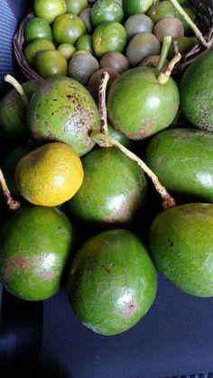 Limões e Abacates