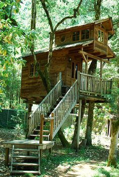 Best tree house hotels in North America. Toooaaatttly doin thiiissssss !!! (i love trees)
