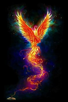 """From the Last Spark"" colorful version. The design is available as t-shirt www. Phoenix Artwork, Phoenix Wallpaper, Phoenix Images, Phoenix Bird Tattoos, Phoenix Tattoo Design, Flame Art, Mythical Creatures Art, Dark Fantasy Art, Bird Art"