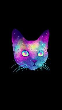 black, cat, colors, galaxy, rainbow