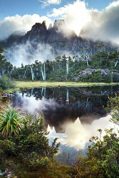 earthporn-org: The Labyrinth Tasmania by Gerard Horsman Beautiful World, Beautiful Places, Beautiful Scenery, Amazing Places, Cool Pictures, Cool Photos, Amazing Photos, Australia Travel, Nature Photos