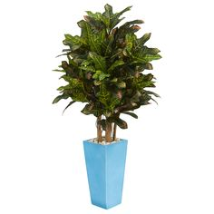 The artificial croton plant's numerous variegated leaves create thick foliage with beautiful splashes of red and yellow atop several trunks. Crafted with care, this croton will add a splash of color to your kitchen or sun-room with its detailed leaves and included turquoise planter with river rocks. Use it on its own, or arrange it with a fern or hanging basket.