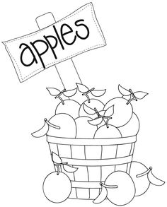 basket filled with apples