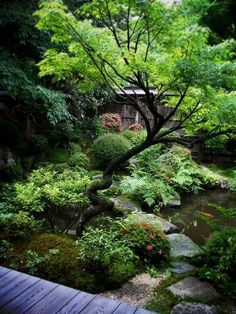 beautiful jardn japonslos