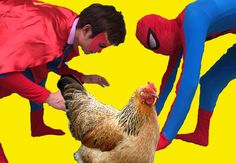 Spiderman vs Captain America hunting the Chicken Fun Superhero in Real Life