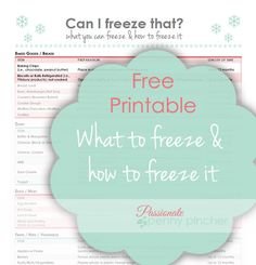 Free printable including what items you can freeze & how to freeze them ~ great way to stock your freezer with items when they're on sale!