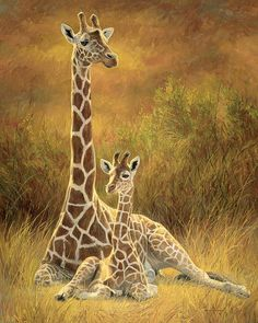 New Arrival Hot Sale Animal Giraffe Home Decor Diy Diamond Painting Kits.View our website to place order. Take your imagination and creativity to a new level with DIY Paint by Diamond Painting Tag 5 Art lovers here for a chance to get your kit for FREE. Wildlife Paintings, Wildlife Art, Animal Paintings, Giraffe Painting, Giraffe Art, Baby Animals, Cute Animals, Giraffe Pictures, Cross Stitch Animals