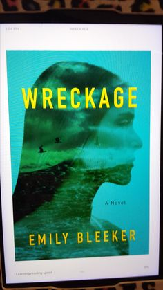 PIN in your mind the image of a plane wreck and the EMOTIONAL damage it could cause.  Then read Emily Bleeker's novel WRECKAGE. 5 star review: http://wp.me/p8quTQ-di
