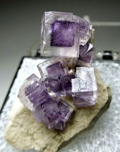 Clear Fluorite crystals with purple zoning on a limestone matrix. Stoneco Auglaize, Ohio
