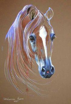 . - Horse Drawings, Animal Drawings, Art Drawings, Horse Artwork, Horse Face, Color Pencil Art, Pastel Art, Equine Art, Horse Pictures