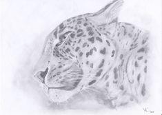 Persian leopard - Pencil drawing / Persischer leopard - Bleistiftzeichnung / Leopardo persiano - Disegno a matita #animal #leopard #art #pencildrawing #drawing #zeichnung #disegno Der Computer, Pencil Drawings, Animals, Art, Children Drawing, Art Background, Animales, Animaux, Kunst