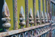 New Orleans French Quarter iron gate fence photograph by 23twenty, $45.00