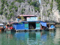 Schwimmendes Dorf in der Halong Bay. Hoi An, Da Nang, Hanoi, Hue, Vietnam, Wings, Album, Blog, Pictures