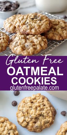 A simple recipe for gluten free oatmeal cookies. You can add chocolate chips or raisins to the cookie dough, making this gluten free cookie exactly the way you like it. free recipes for dessert videos Gluten Free Oatmeal Cookies Gluten Free Oatmeal Cookie Recipe, Oatmeal Chocolate Chip Cookie Recipe, Healthy Oatmeal Cookies, Gluten Free Chocolate Chip Cookies, Chocolate Oatmeal, Dairy Free Oatmeal Raisin Cookies, Zucchini Oatmeal Cookies, Easy Oatmeal Raisin Cookies, Flourless Chocolate Chip Cookies