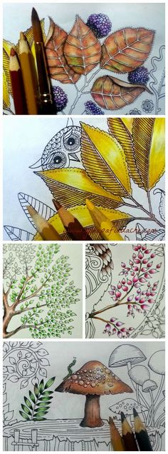 Atelier Gina Pafiadache: Jardim Secreto - Secret Garden - Colorindo folhas com lápis de cor Coloring Books, Coloring Pages, Adult Coloring, Coloring Tips, Cool Drawings, Pencil Drawings, Draw Tutorial, Secret Garden Book, Enchanted Forest Coloring Book