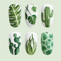 Cactus an succulent designs on white short square nail