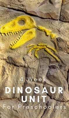 Take a journey and learn all about them with this 4 week Dinosaur Unit Study geared toward preschoolers. Kindergarten Freebies, Homeschool Kindergarten, Preschool Lessons, Preschool Themes, Preschool Projects, Kids Crafts, Dinosaurs Preschool, Dinosaur Activities, Learning Activities