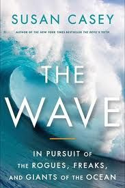 Awesome book describing the pattern behind waves, and the unexplainable rouge waves