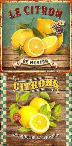 Лимон прованс