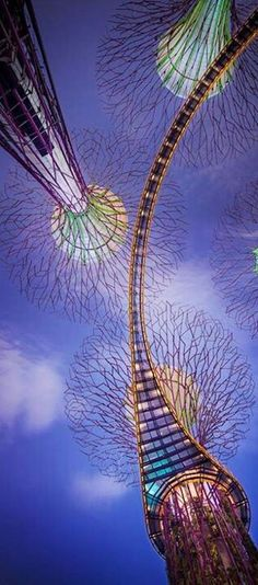 "Super trees at ""Garden by the bay"" #Singapore"