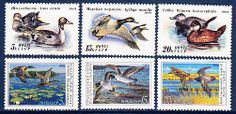 Russia Birds Ducks 1990 & 1991 Sc.5906-08 & 6009-11 MNH