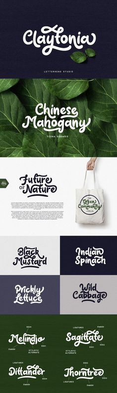 Claytonia Bold Script is a playful style script design, published by Letterhend Studio.