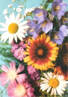 #charmcolorfully bouquet