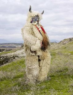 Part of the Wilder Mann series by Charles Fréger- showcases pagan costumes in Europe and our connection to the wild.