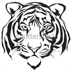 tigre de bengala blanco para dibujar - Buscar con Google