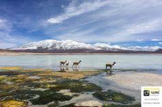 Bolivien im Quadrat – Meine Reise via Instagram