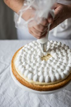 PIERRE HERMES' LEMON TART ~~~ use this lemon filling recipe and the the style of meringue dollops