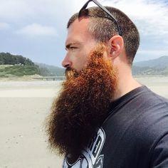 bigbeardedfrenchman — bearditorium:   Snyder