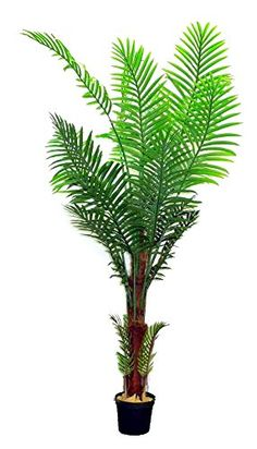 Admired By Nature 7' Artificial Paradise Palm Tree Plant in Plastic Pot, Green >>> You can get additional details at the image link.