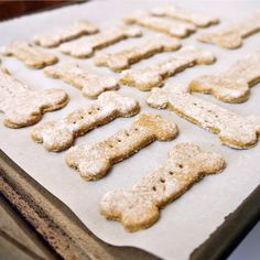 Healthy Low-Fat Organic Dog Biscuits~Recipe uses pumpkin and spinach as a base instead of peanut butter.  Article says pumpkin helps with a dog's digestion, is full of antioxidants, and helps keep the dog at his ideal weight.  Recipe looks easy to make.