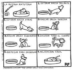 Viñeta cómica: rutina canina matutina