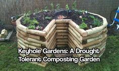 Keyhole Gardens: A Drought Tolerant Composting Garden  The Keyhole Garden concept is brilliantly simple. A circular raised bed has a center compost basket that distributes nutrients to the surrounding lasagna-style garden bed. A small pie-slice section of the bed is used for easy access to the cent…