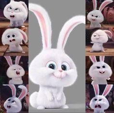 Funny Cartoon Gifs, Cute Cartoon Wallpapers, Funny Phone Wallpaper, Cute Disney Wallpaper, Snowball Rabbit, Rabbit Wallpaper, Cute Bunny Cartoon, Alien Drawings, Pet Rabbit