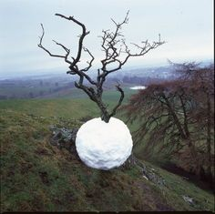 For the Wild-Hearted Souls - lissycposts: Andy Goldsworthy's art
