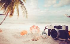 Download wallpapers summer travel, concepts, sand, beach, camera, beach accessories, seashells, palm trees, sunset