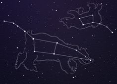 constellations of ursa major and ursa minor are the only couple tattoos i would… – Constellation Tattoo Ursa Major, Astronomy Tattoo, Celestial Map, Big Dipper, Star Chart, Comic, Constellation Tattoos, Couple Tattoos, Tattoos With Meaning