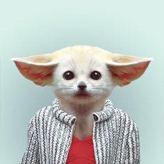 FENNEC FOX by Yago Partal for ZOO PORTRAITS