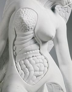 Damien Hirst, sculpture, The Anatomy of an Angel