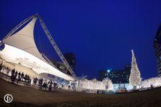 Crown Center Ice Terrace | Freeland Photography | fish eye shot