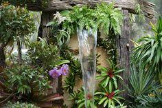 Zen-like garden:)