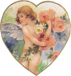 valentine film dorothy
