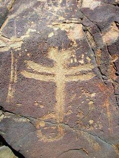 dragonfly Petroglyph nm